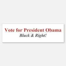 Cute Romney ryan bumper Sticker (Bumper)