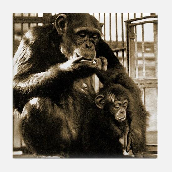 Mama Monkey Coaster