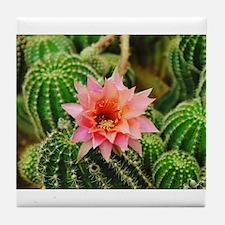 Cactus Flower Tile Coaster