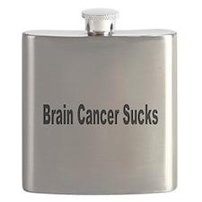 brain2.jpg Flask