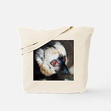 Cute Lemur Tote Bag