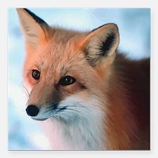 """Cute Fox Square Car Magnet 3"""" x 3"""""""