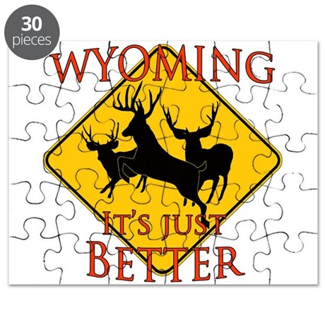 Wyoming is better Puzzle