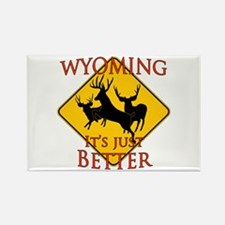 Wyoming is better Rectangle Magnet