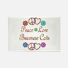 Burmese Cats Rectangle Magnet
