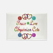 Abyssinian Cats Rectangle Magnet