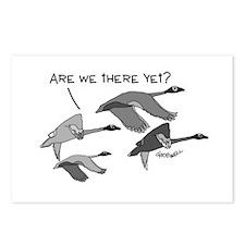 Geese Postcards (Package of 8)