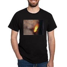 BURN, BABY, BURN III T-Shirt