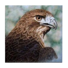 Red-tail Hawk Tile Coaster