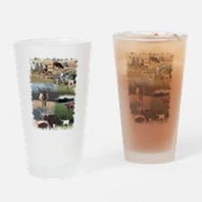 Texas Longhorn Cattle Drinking Glass