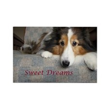 Sweet Dreams Rectangle Magnet
