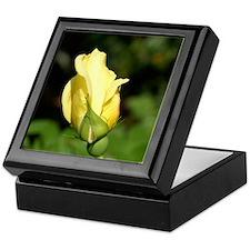 Yellow Rose Bud Keepsake Box