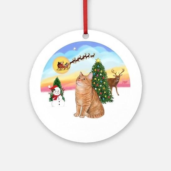 Take Off - Orange Ragdoll cat Ornament (Round)