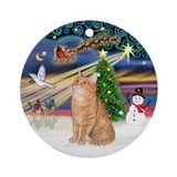 Orange tabby cat window Round Ornaments