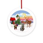 Treat - British Short Haired cat Ornament (Round)