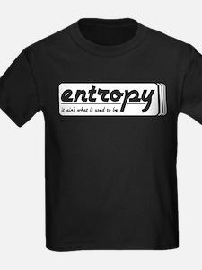 Entropy T