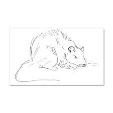 Sketch Rat Car Magnet 20 x 12