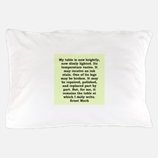 39.png Pillow Case