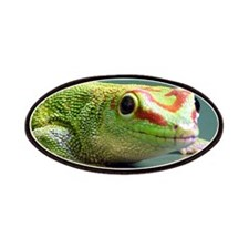 Day Gecko Patches