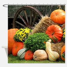 Pumpkins, Fall Themed, Shower Curtain