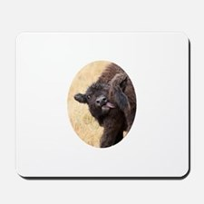 bison baby Mousepad