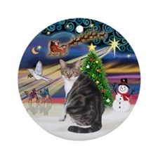 XmasMagic-Tabby & White cat (mmk) Ornament (Ro