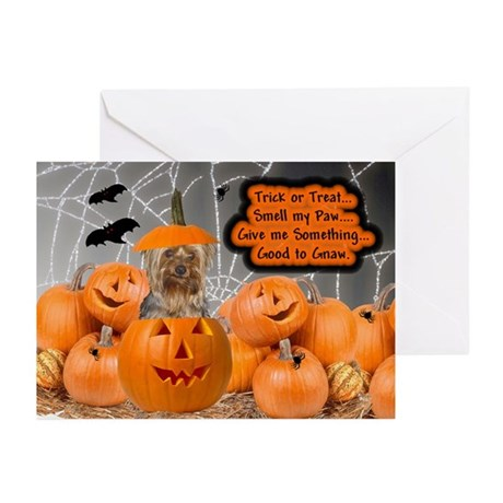 Yorkie Halloween (Puppy Cut) Greeting Cards (Packa