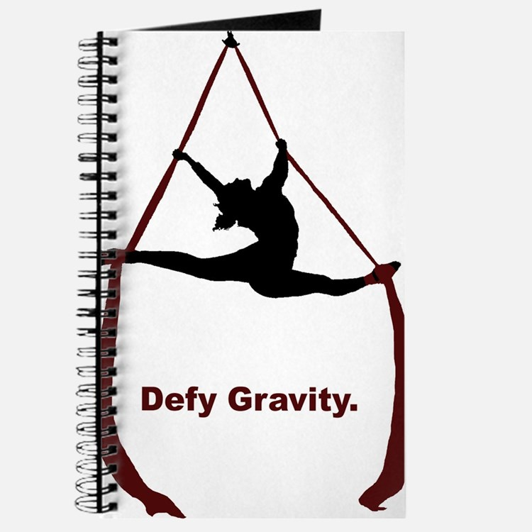 Defy Gravity Journal