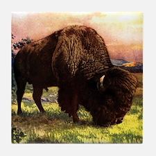 Vintage Bison Painting Tile Coaster