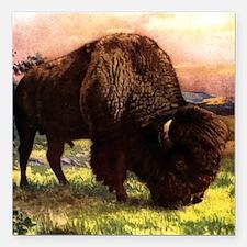 "Vintage Bison Painting Square Car Magnet 3"" x 3"""
