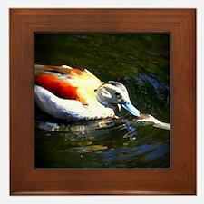 Duck Love Framed Tile