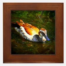 An Odd Duck Framed Tile
