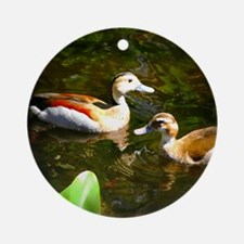A Likely Pair of Ducks Ornament (Round)