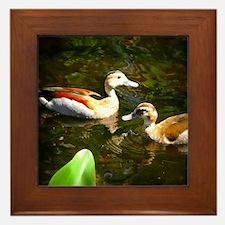 A Likely Pair of Ducks Framed Tile