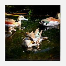 A Duck Quartet Tile Coaster