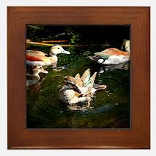 A Duck Quartet Framed Tile
