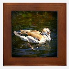 Lonesome Duck Framed Tile