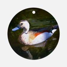 FLOATING DUCK Ornament (Round)
