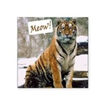 ITouch2-TigerPhotoMeow.png Square Sticker 3
