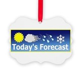 Meteorologist Picture Frame Ornaments