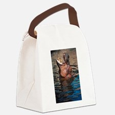 DolphinPhotoShowerCurtain.png Canvas Lunch Bag