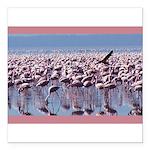 flamingoflock.JPG Square Car Magnet 3