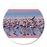 flamingoflock.JPG Round Car Magnet