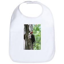 Pileated Woodpecker Bib