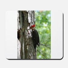 Pileated Woodpecker Mousepad