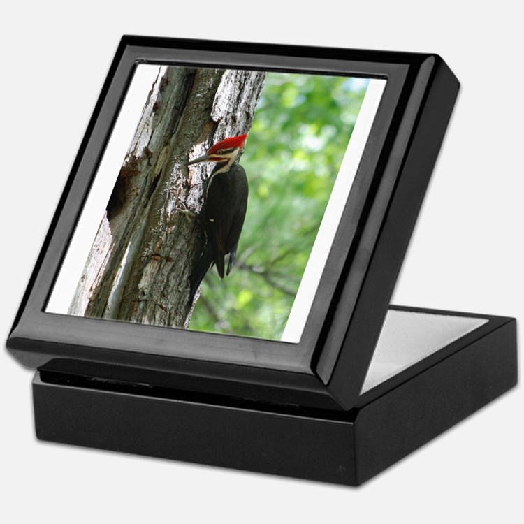 Pileated Woodpecker Keepsake Box