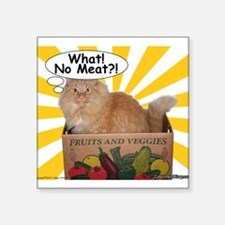 "Hippy Kitty What! No Meat?! Square Sticker 3"" x 3"""