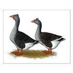 Tufted Toulouse Geese Small Poster