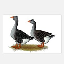 Tufted Toulouse Geese Postcards (Package of 8)