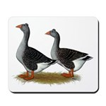 Tufted Toulouse Geese Mousepad